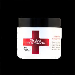 Маска для интенсивного восстановления Oh Dog , It's a Miracle Mask